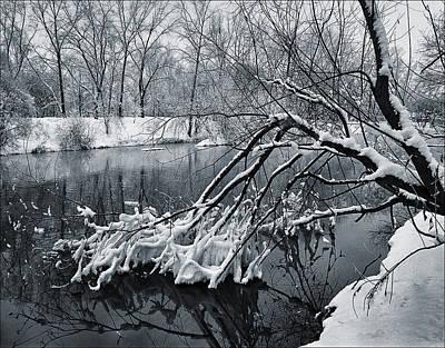 Photograph - Begining Of Winter by Vladimir Kholostykh
