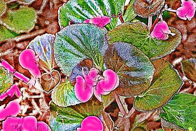 Begonia Art Print by EricaMaxine  Price