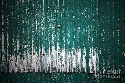 Photograph - Behind The Green Shed by Stephen Mitchell
