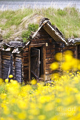 Frame House Photograph - Behind Yellow Flowers by Heiko Koehrer-Wagner