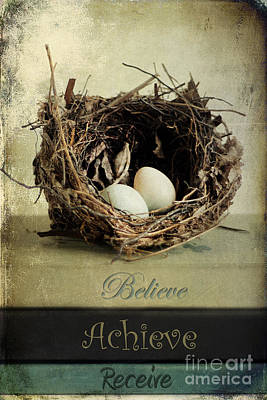 Baby Bird Photograph - Believe Achieve Receive by Darren Fisher