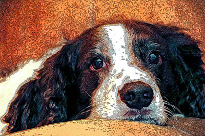 Sleeping Dog Digital Art - Bella by James Steele