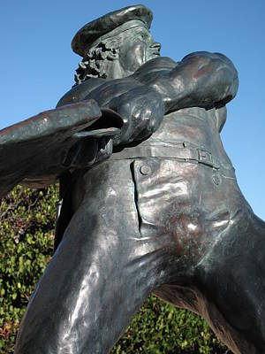 Dana Point Photograph - Belted Bronze  by Linda Larson