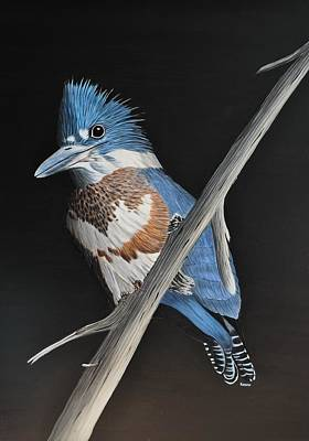 Painting - Belted Kingfisher by Kenneth M Kirsch