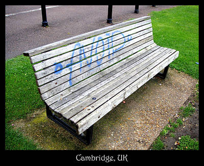 Photograph - Bench 04 by Roberto Alamino