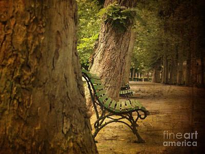 Park Benches Photograph - Bench In A Park by Bernard Jaubert