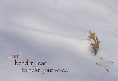 Photograph - Bend My Ear by Bernard Lynch