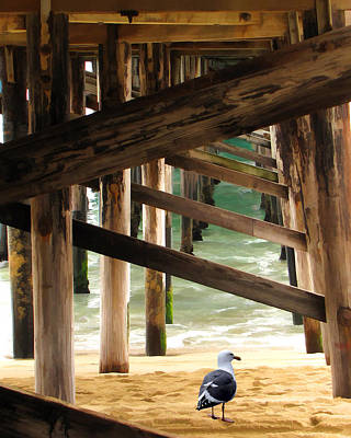 Beneath The Pier Art Print by Diane Wood