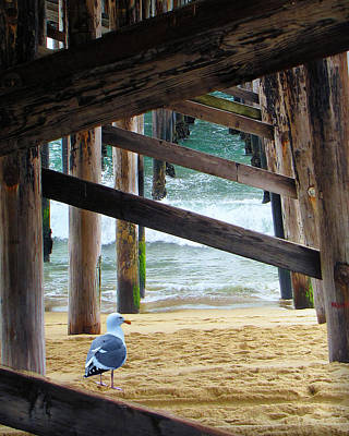 Photograph - Beneath The Pier II by Diane Wood