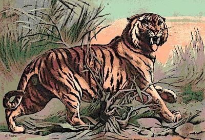Asian Tiger Digital Art - Bengal by George Pedro