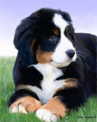 Puppy Mixed Media - Bernese Mountain Pup by Snake Jagger