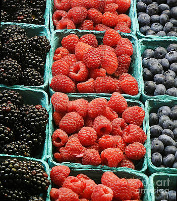 Photograph - Berry Baskets by Jim And Emily Bush