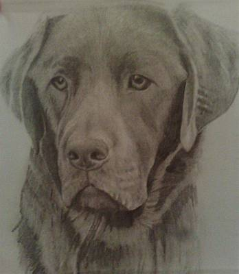 Drawing - Best Friend by Susan  Solak