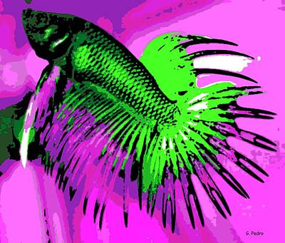 Photograph - Betta by George Pedro