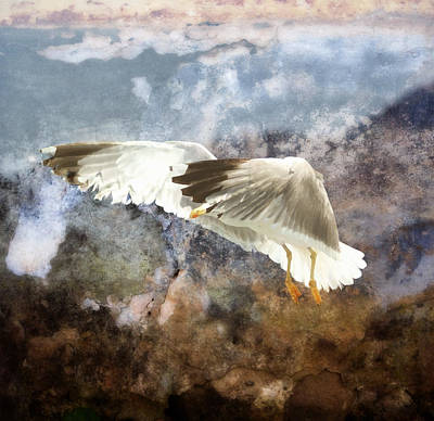 Seagull Mixed Media - Between Heaven And Earth by Georgiana Romanovna