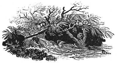 Bewick: Man Drowning Art Print by Granger