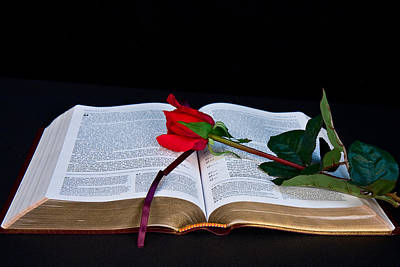 Photograph - Bible And Rose by Trudy Wilkerson