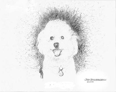 Art Print featuring the drawing Bichon Frise by Jim Hubbard