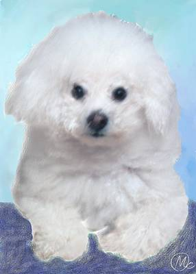 Digital Art - Bichon Frise by Mary M Collins