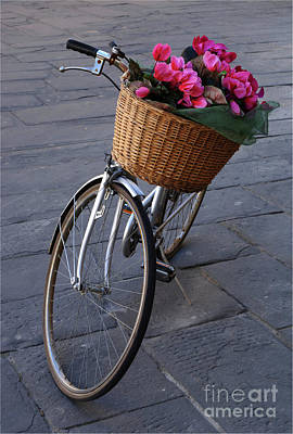Bicycle In Lucca Italy Art Print by Bob Christopher