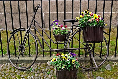 Art Print featuring the photograph Bicycle In Salem by Caroline Stella