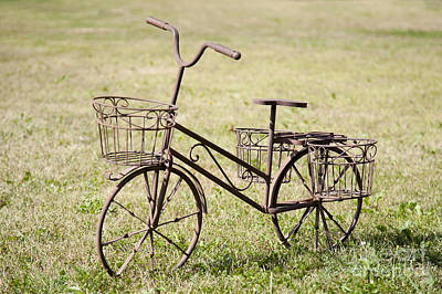 Bicycle Lawn Ornament Art Print by Jaak Nilson