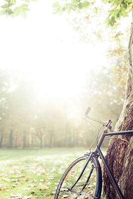 Bicycle Leaned On Big Tree In Sunlight. Art Print by Guido Mieth