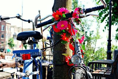 Photograph - Bicycle With Flowers by Dean Harte