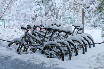 Snowstorm Photograph - Bicycles In The Snow by Heidi Smith
