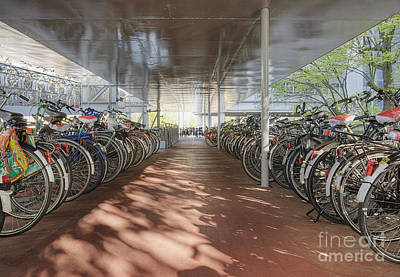 Bicycles Under A Shelter Art Print by Andersen Ross