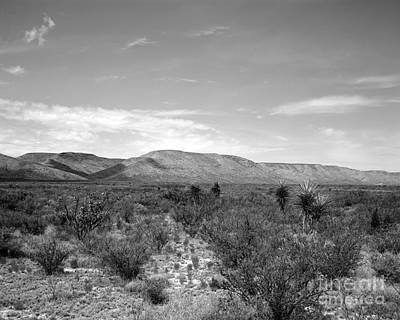 Photograph - Big Bend Vista by David Chalker