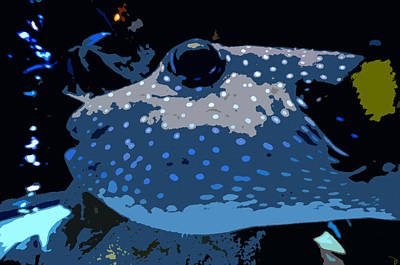 Blow Fish Digital Art - Big Blow Fish by David Lee Thompson