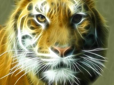 Big Cat Big Stripes Print by Tilly Williams