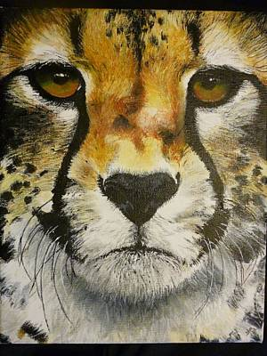 Big Cat Eyes Original Oil Painting 8 X 10 On Wrapped Canvas Provide Picture Art Print