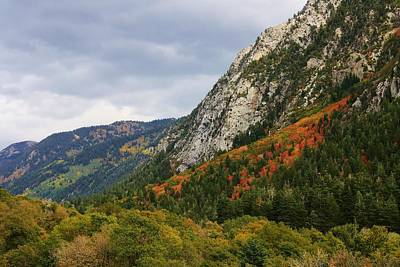 Big Cottonwood Canyon 2 Art Print by Bruce Bley