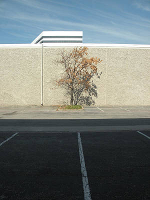 Photograph - Lonely Lot by Ross Odom