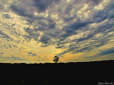 Big Sky Art Print by Debbie Portwood