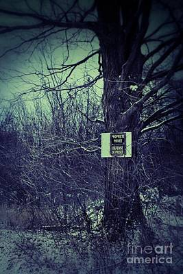 Photograph - Big Tree With Sign In The Woods by Sandra Cunningham