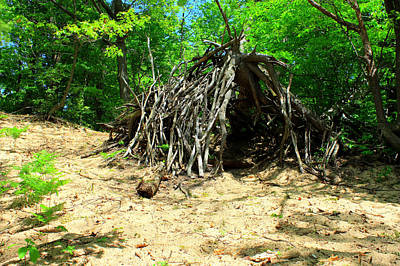Bigfoot House - Sasquatch Cottage Original