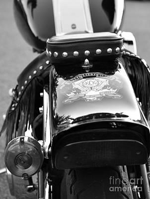 Photograph - Bike Me by Traci Cottingham
