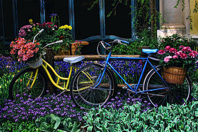 Art Print featuring the photograph Bike Ride by Tammy Espino