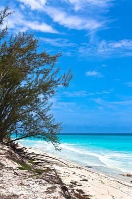 Photograph - Bimini Beach by Ed Gleichman