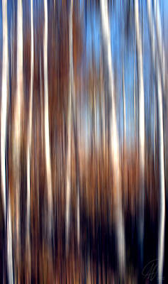 Digital Art - Birch by Margaret Hormann Bfa