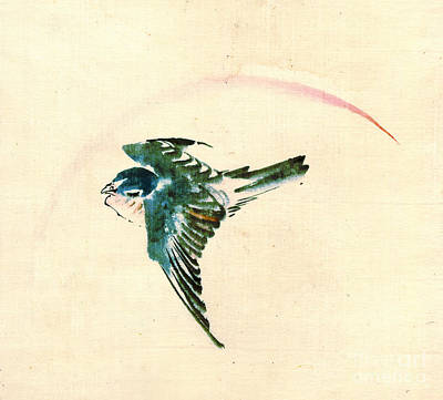 Bird Flying 1840 Art Print by Padre Art