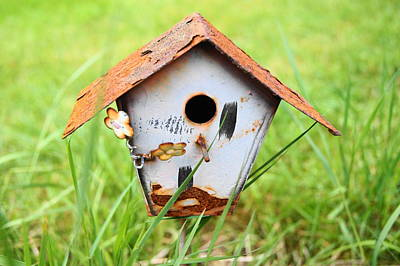 Photograph - Bird House by Angi Parks