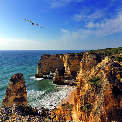 People On Beach Wall Art - Photograph - Bird In Flight  At Marinha Beach by Pilar Azaña Talán