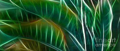 Vibrant Digital Art - Bird Of Paradise Fractal Panel 3 by Peter Piatt