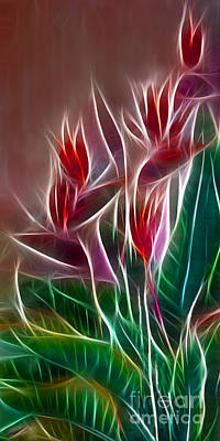 Bird Of Paradise Fractal Art Print by Peter Piatt