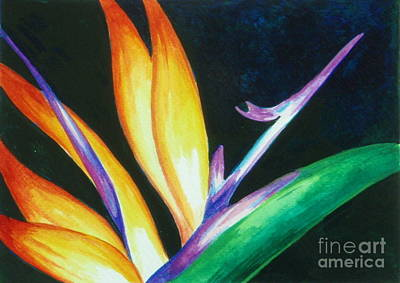 Painting - Bird Of Paradise IIi by Edoen Kang