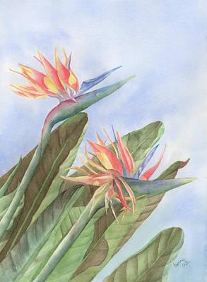 Bird Of Paradise Art Print by Leona Jones